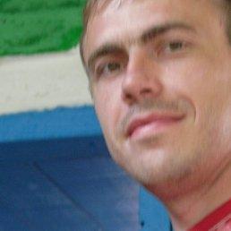 Андрей, 38 лет, Жашков