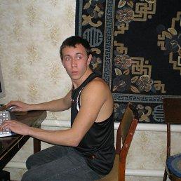 Рома, 32 года, Лиховка