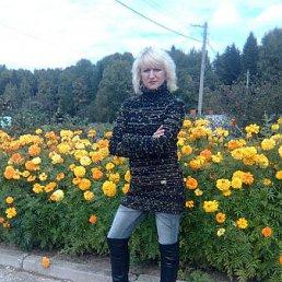 Наталья, 42 года, Шаховская