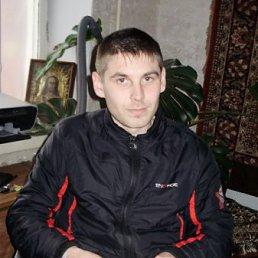Алексей, 31 год, Красные Окны