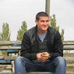 Дмитрий, 26 лет, Приморск