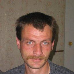 Сергей, 43 года, Клин