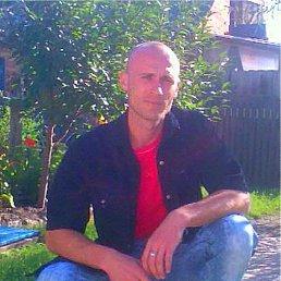 Виталий, 39 лет, Богодухов
