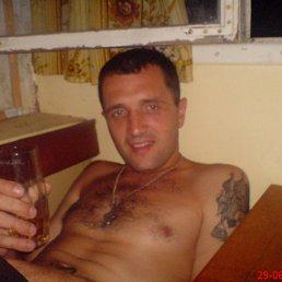 роман, 42 года, Золочев