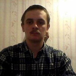 Павел, 28 лет, Пошехонье