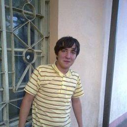 Максим, 28 лет, Ликино-Дулево