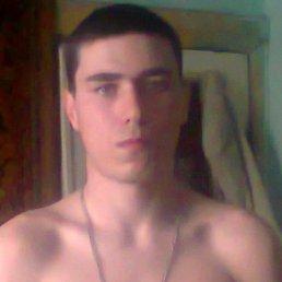 Эльдар, 24 года, Дальнереченск