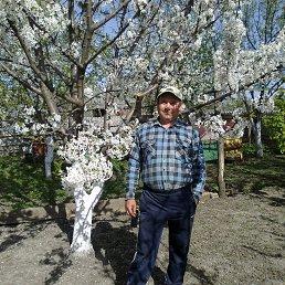Владимир, 51 год, Гайворон