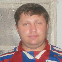 Алексей, 44 года, Красногорский