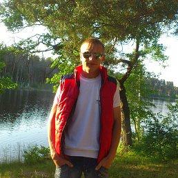 Денис, 29 лет, Сосновское