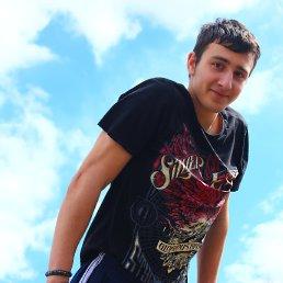 Макс, 24 года, Коломна-1