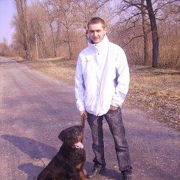 Андрей, 27 лет, Глухов