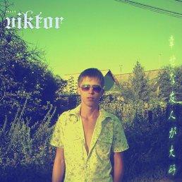 Виктор, 29 лет, Рузаевка