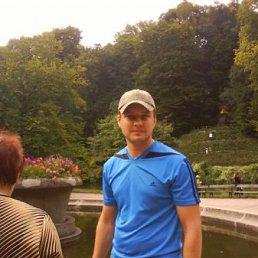 Сергей, 40 лет, Новомиргород