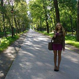 Сашка, 28 лет, Сланцы