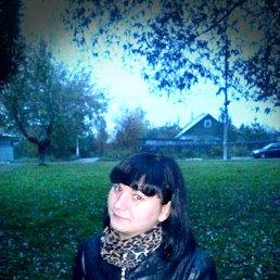Анюта, 28 лет, Климовск