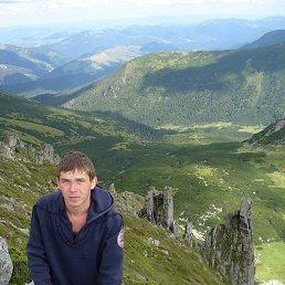 Salavat, 34 года, Вижница
