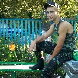 Александр, 29 лет, Умань