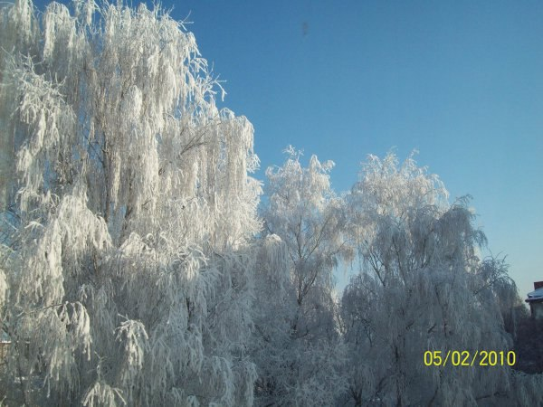 Зимнее фото: Вид из окна - -=Х@зяйка=-УКРАШЕНИЯ для волос, 47 лет, Луцк