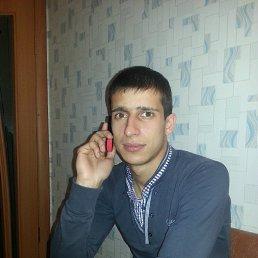 Вячеслав, 28 лет, Рамонь