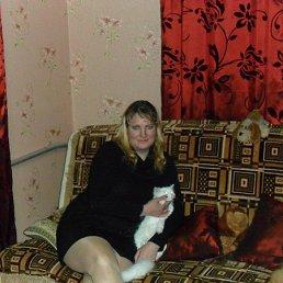 Светлана, 45 лет, Ельня