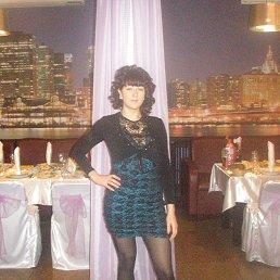Ольга, 28 лет, Макеевка