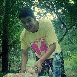 Виталий, 24 года, Великая Александровка