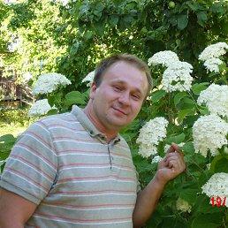 Евгений, 35 лет, Конаково