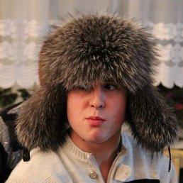 Александер, Светлогорск
