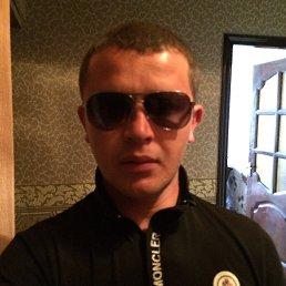 Константин Адаменко, 36 лет, Белгород