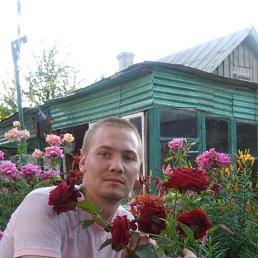 Игорь, 28 лет, Кашары