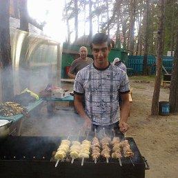 Farshad, 27 лет, Селенгинск