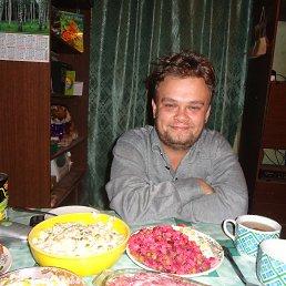 Андрей, 32 года, Холмская