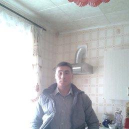 Андрей, 43 года, Завьялово
