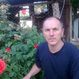 Владимир, 52 года, Голая Пристань