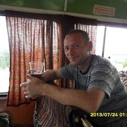Андрей, 45 лет, Орджоникидзе
