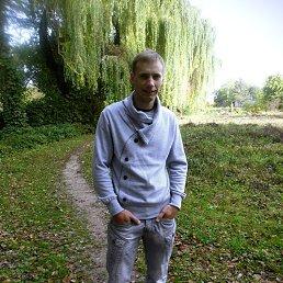 Андрюша, 30 лет, Млынов