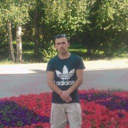 Назир, 28 лет, Архангельск