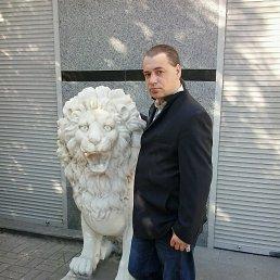Александр, Кировград