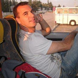 Рамиль, 44 года, Арск