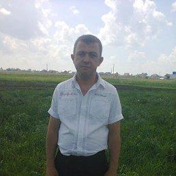 аликсей, 39 лет, Курск