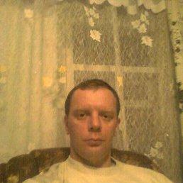 сергей, 42 года, Тарасовский