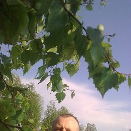 Александр, 38 лет, Медведево