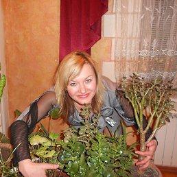 Лариса, 53 года, Купянск