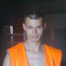 сергей, 35 лет, Гай
