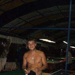Андрей, 31 год, Зауральский