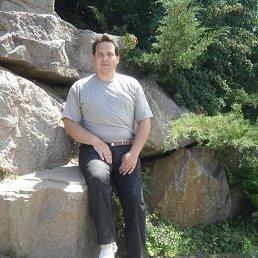 Алекс, 37 лет, Холмы