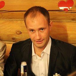 Александр, Бердск, 38 лет