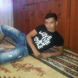 Зариф, 27 лет, Лосино-Петровский