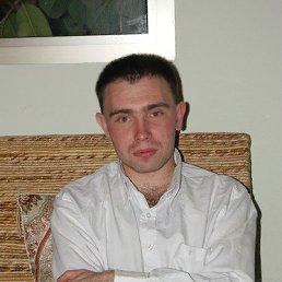 Миша, 36 лет, Беэр-Шева